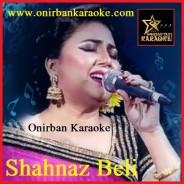 Ronger Duniya Tore Chaina Karaoke By Shahnaz Beli (Mp4)